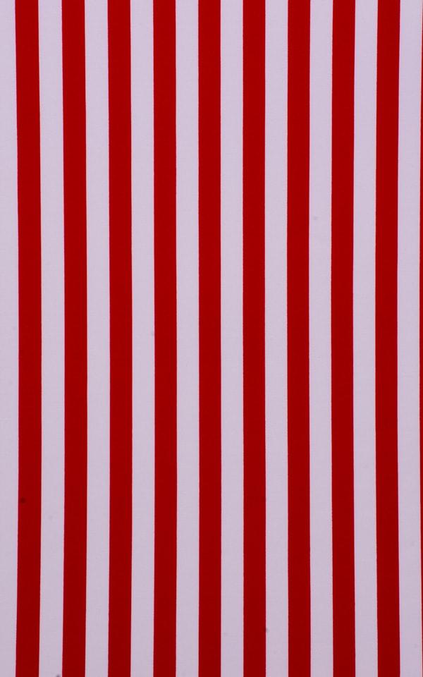 Low Rise Side Tie Brazilian Bottom in American Red Stripes Fabric