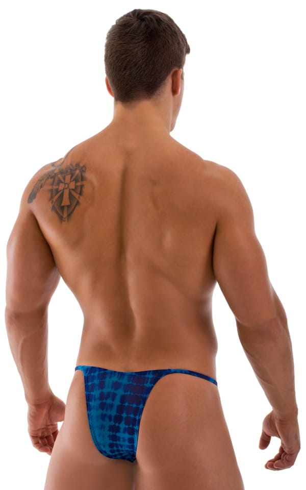 semi-sheer mens swimsuit blue back