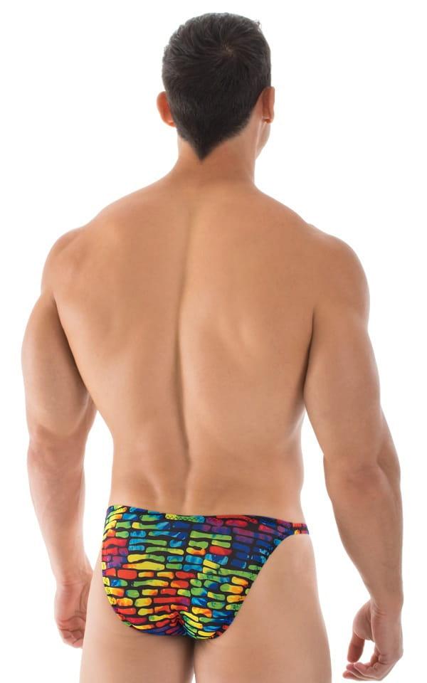 Smooth Front Bikini Bathing Suit in Technicolor Tan Through 6
