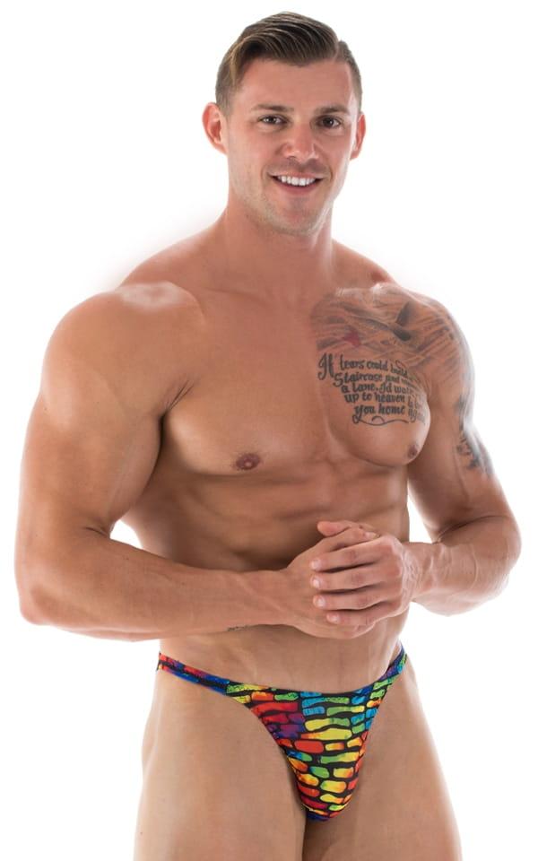 Smooth Front Bikini Bathing Suit in Technicolor Tan Through 1