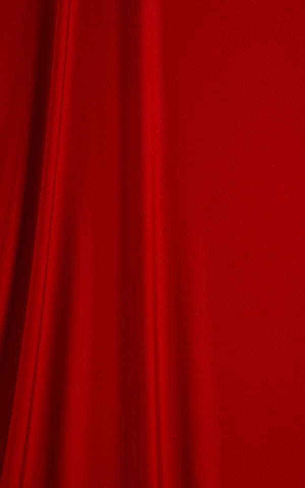 Maximum Tanning Triangle Top in Red Fabric