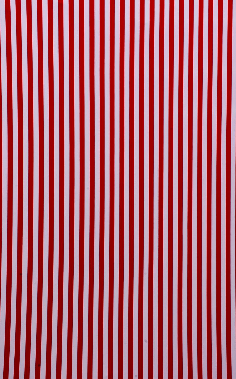 American Stripes tricot-nylon-lycra 4