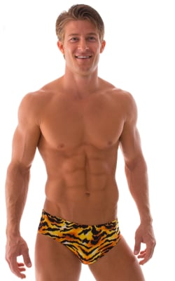 mens swimsuit brief in tiger print