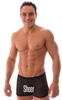 Mens Sheer Swimwear