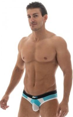 paneled mesh blue low profile brief underwear