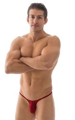 Sunseeker Micro Pouch Half Back Bikini in Crimson Powernet