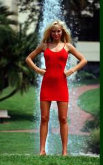 Contour Mini Dress 3