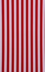 Skinny Side Rio Bikini Bottom in American Stripes Fabric