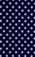 Stars on Navy tricot/nylon/lycra 3