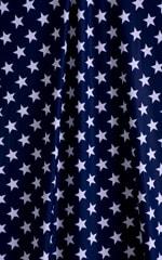 Skinny Side Rio Bikini Bottom in American Stripes 99.8