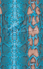 Color Blocked T Back Thong Bikini in Aqua Python & Aqua Python Print on Mesh Fabric