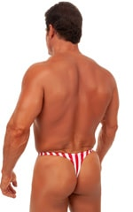 Swimsuit Thong in Stars and Stripes 3