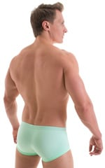 Extreme Low Square Cut Swim Trunks in Mint 3