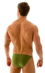 Smooth Front Bikini Bathing Suit in ThinSKINZ Sage 3